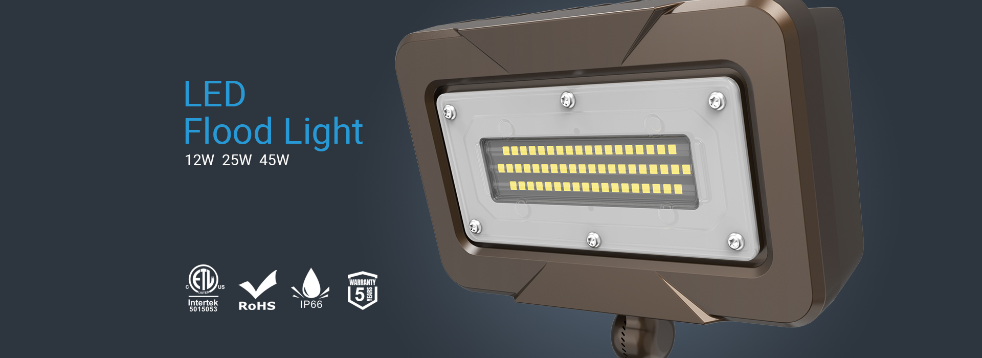 RZ Lighting: Professional Manufacturer of Economical Outdoor LED